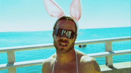 bunny_guard